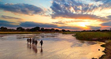 Malawi & Luangwa Valley